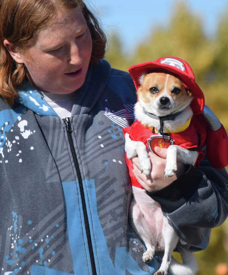 Sadie, owned by Jennifer White, won first place at the pet costume contest during Jacksonville's Main Street Pumpkin Festival on Sunday. Photo: Rochelle Eiselt | Journal-Courier
