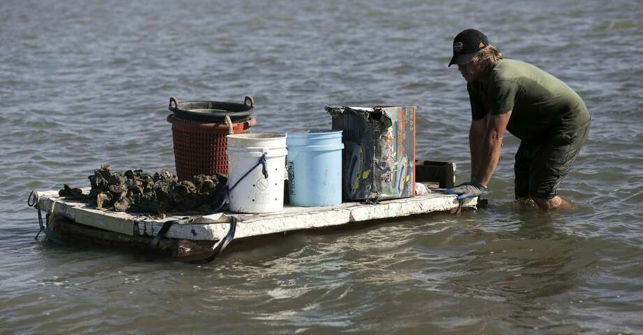 The Texas Parks and Wildlife Department announced closures for the state's 2019-20 oyster season. Photo: Elizabeth Conley/Houston Chronicle