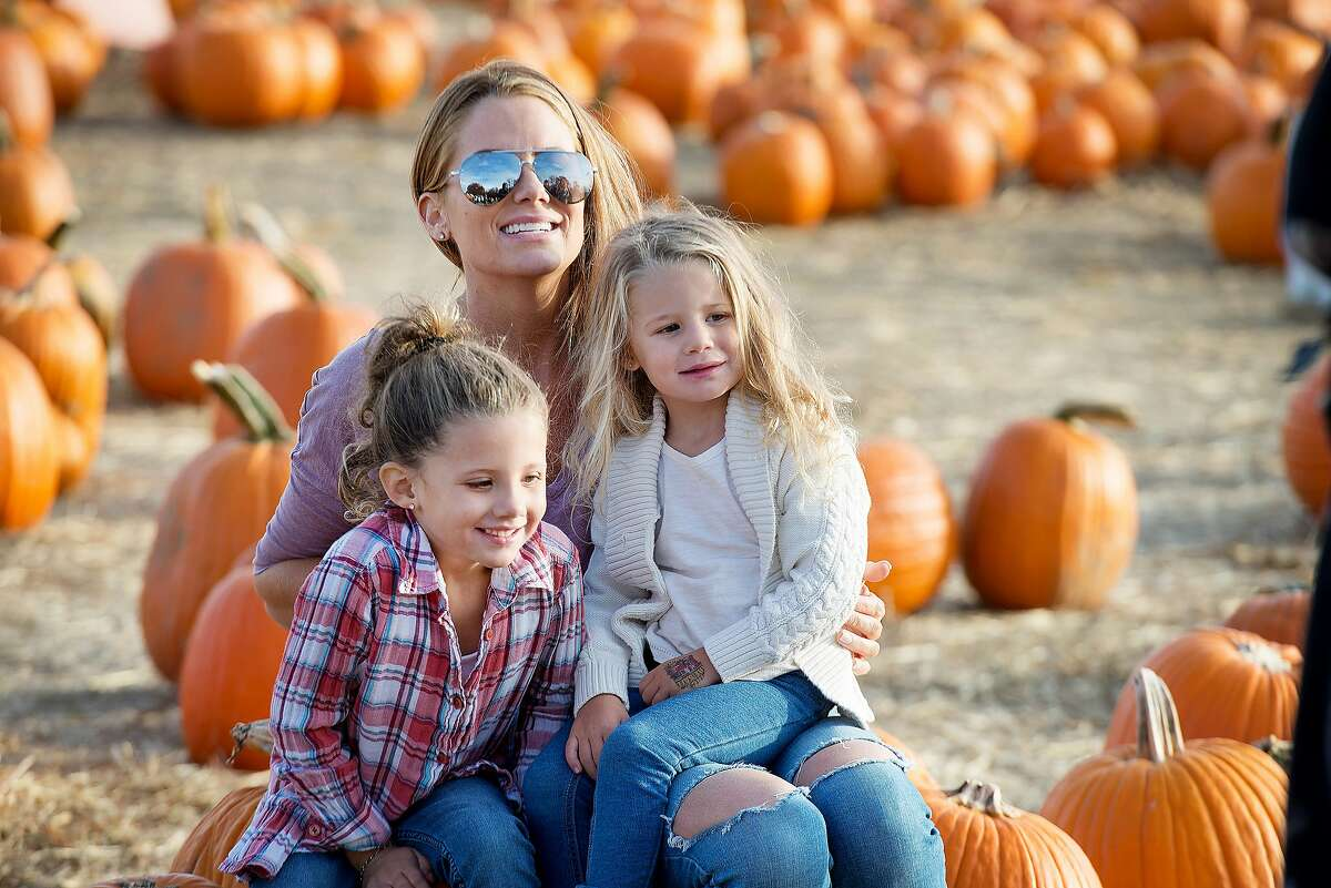Social media feeds become flooded with pumpkin patch and apple orchard photos.