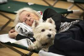 In this Sunday, Oct. 27, 2019, photo, Patti Hewitt rests on a cot with her dog at a Red Cross shelter set up for wildfire evacuees at the Sonoma County Fairgrounds in Santa Rosa, Calif., after evacuating her Santa Rosa home in the morning. The Red Cross established the shelter for evacuees with pets at the Sonoma County Fairgrounds. (John Burgess/The Press Democrat via AP)