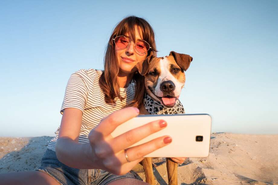 "Keep clicking or swiping for ""Most popular house-friendly dogs"" Photo: Oleksiy Boyko / EyeEm, Getty Images"