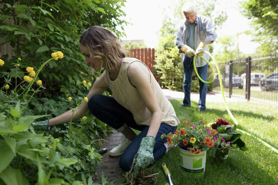 Looking to learn something new or pick up a gardening trick or two? Check out our Something New listings. Photo: Hero Images / Getty Images /Hero Images / Hero Images