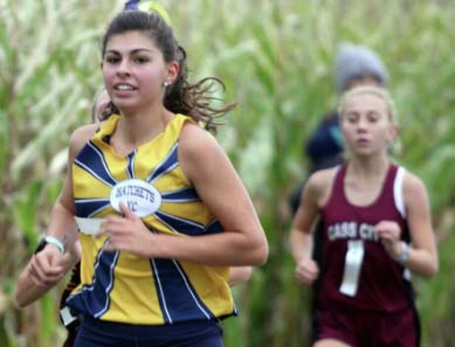 Area cross country teams had strong showings at the D3 regionals at Shepherd High School. Photo: Eric Rutter/Huron Daily Tribune, File