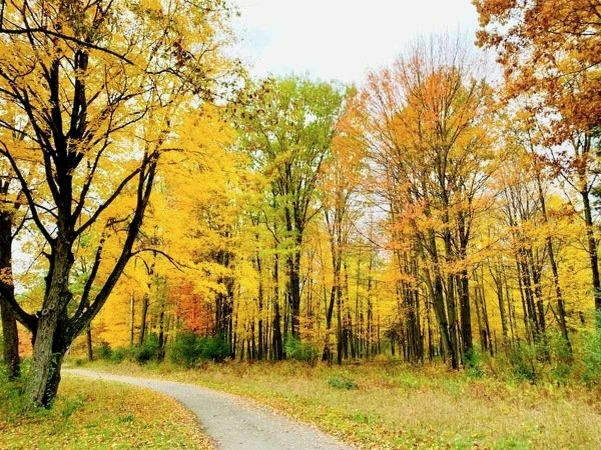 Beautiful colors can be seen along the cart path at Tullymore Golf Course in Canadian Lakes. (Submitted photo/Joe Crew)