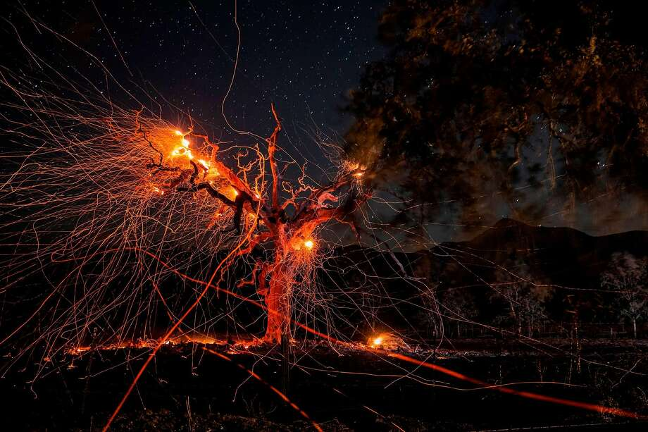 A long exposure photograph shows a tree burning during the Kincade fire off Highway 128, east of Healdsburg, California on October 29, 2019. Photo: Philip Pacheco, AFP Via Getty Images