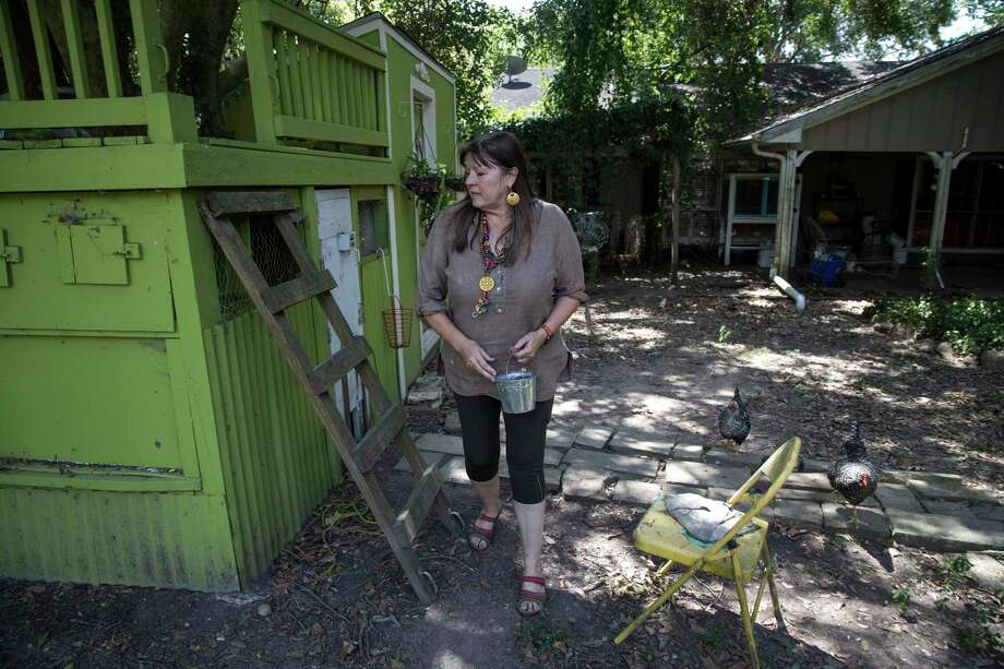 """Ramona Ridge checks for fresh eggs in her backyard. """"I moved out here from near the Galleria to be out in the country,"""" she said. Photo: Jon Shapley,  Houston Chronicle / Staff Photographer / © 2019 Houston Chronicle"""