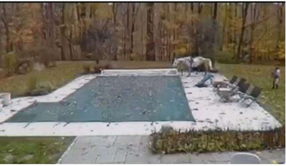 A horse fell into a neighbor's swimming pool in Wilton on Monday, October 28, 2019. Photo: Contributed Photo / News 12 Connecticut / Wilton Bulletin Contributed