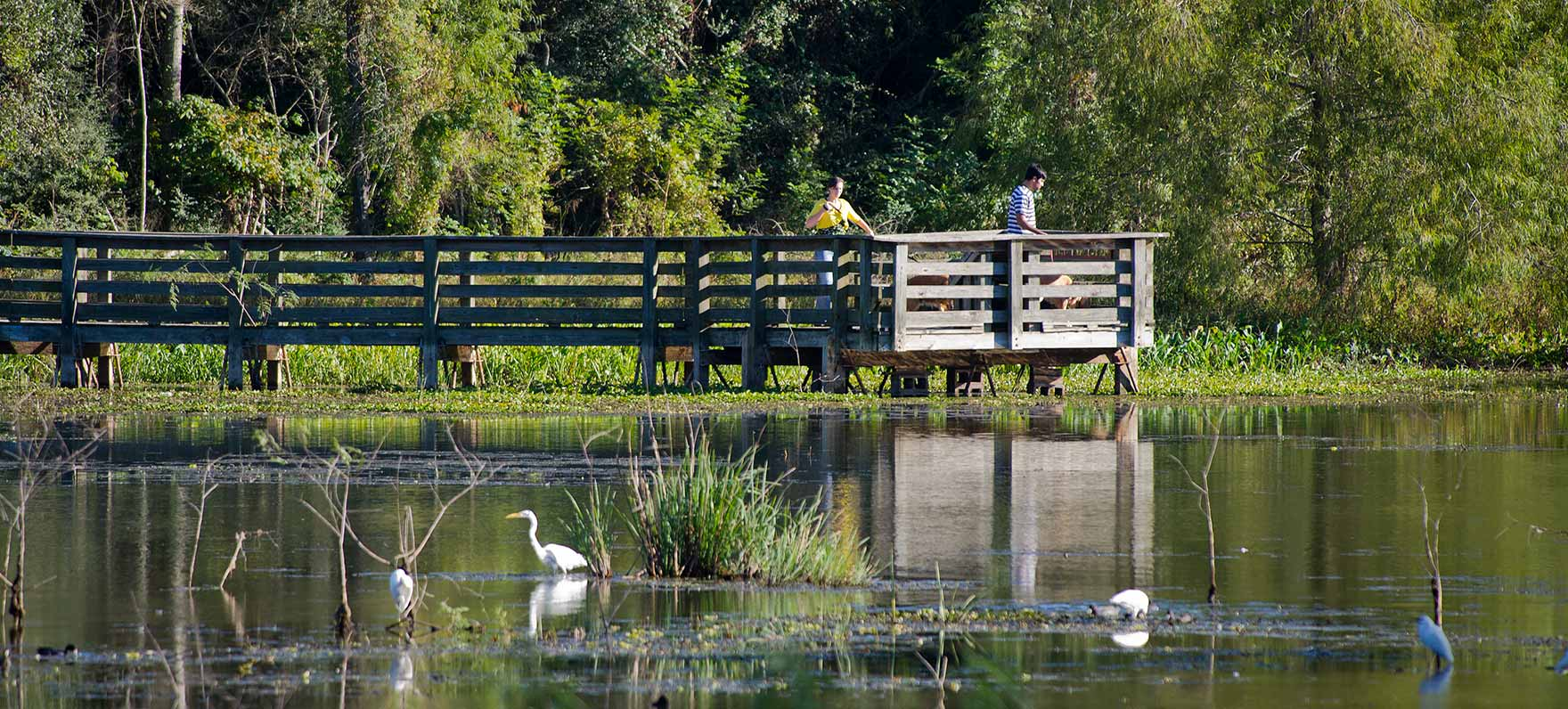 5 of the Best Hiking Destinations Near Houston