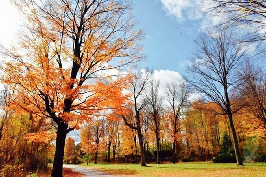 A walk through the park is a great way to take in the beauty of the fall colors like these at a roadside park between Baldwin and Reed City. (Submitted photo/Joe Crew)