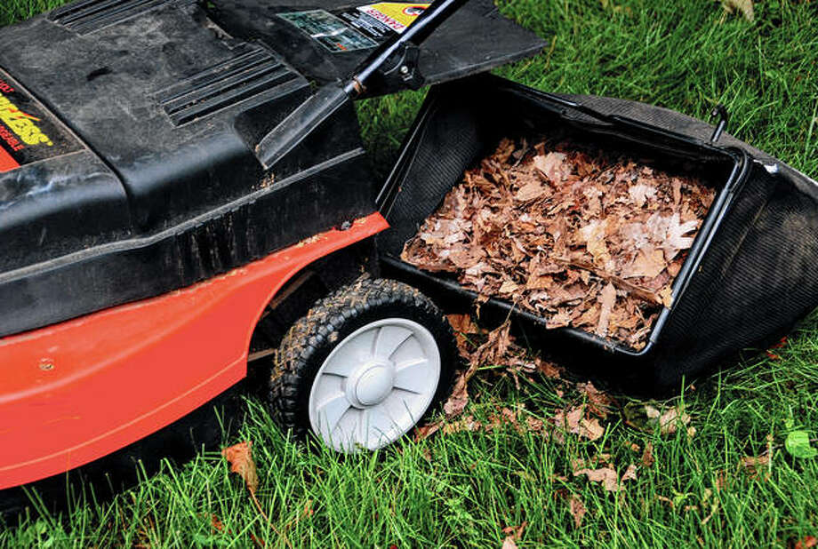 Shred and collect fall leaves with every pass of the mower. Then place a layer in flower beds to insulate perennial plant roots, conserve moisture, suppress weeds and improve the soil as it breaks down. Photo: Melinda Myers LLC