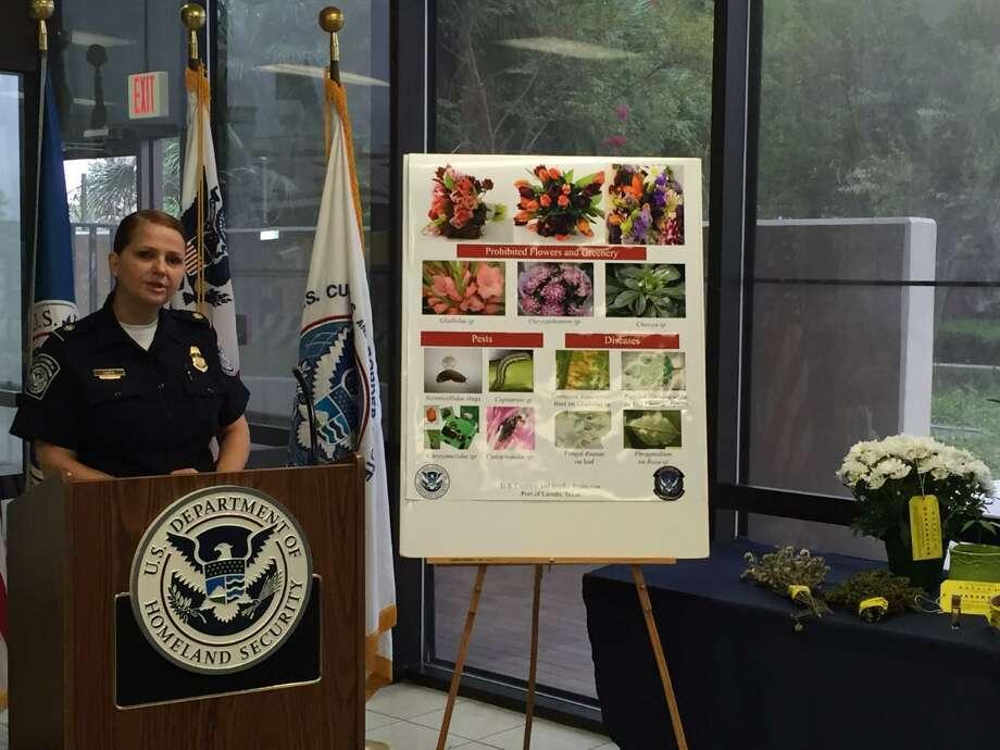 Una agente de Aduanas y Protección Fronteriza muestra algunas de las plantas cuyo ingreso al país está prohibido. Photo: Foto De Cortesía /CBP