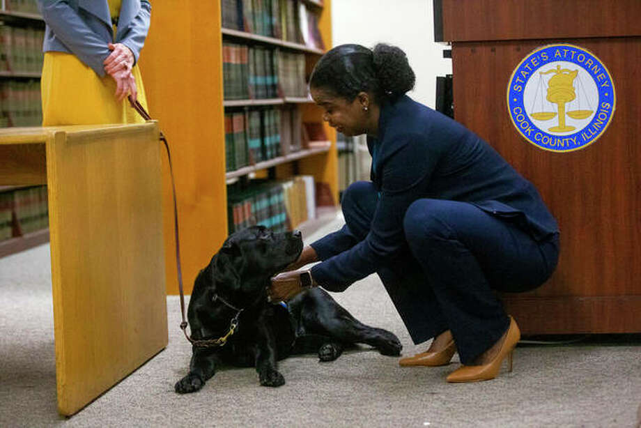 Hatty's primary handler and victim witness specialist Stephanie Coehlo, holds the black lab as Hatty is sworn in by Cook County State's Attorney Kimberly Foxx. Hatty will provide comfort and assistance to young and mentally disabled victims of sexual assault and violence. Photo: Camille Fine | Chicago Tribune (AP)