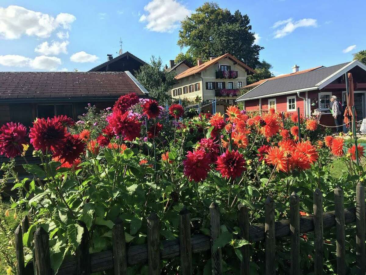 Flower boxes and gardens are a common sight throughout Bavaria, Germany.