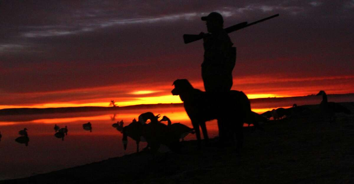 Duck season in Texas' South Zone opens Saturday and runs through Dec. 1. It then resumes on Dec. 14 and ends Jan. 26.