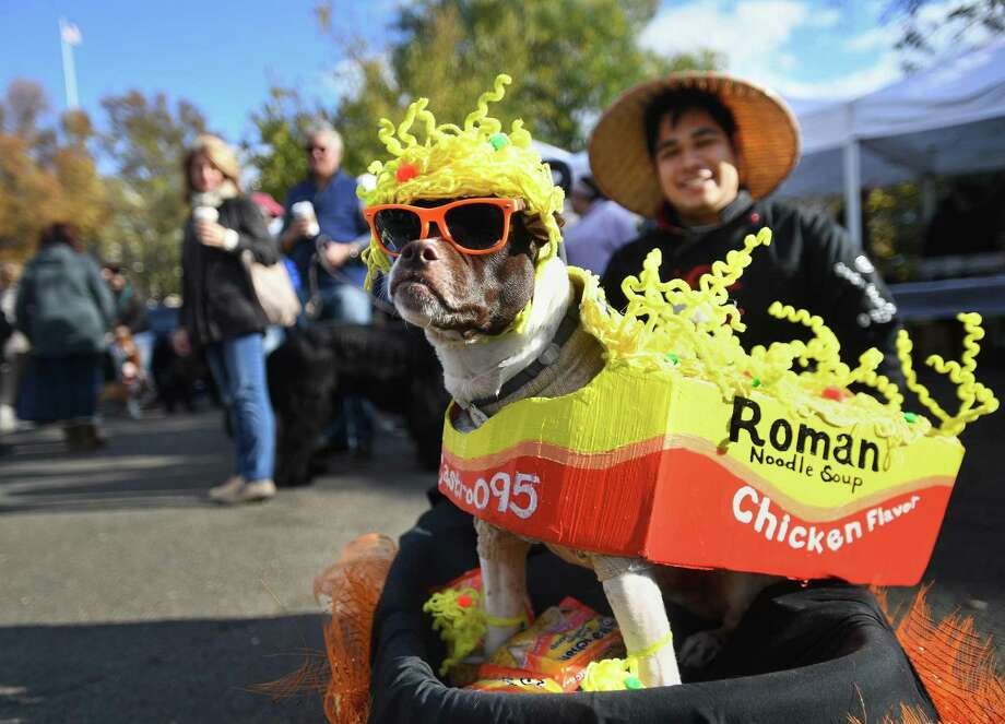 Josh Castro, above, of Westchester County, N.Y., dressed his dog Roman as a box of ramen noodles for the 12th Annual Howl & Prowl costume contest for pets and their owners at Greenwich Commons Park on Sunday, November 3, 2019. Photo: Brian A. Pounds / Hearst Connecticut Media / Connecticut Post