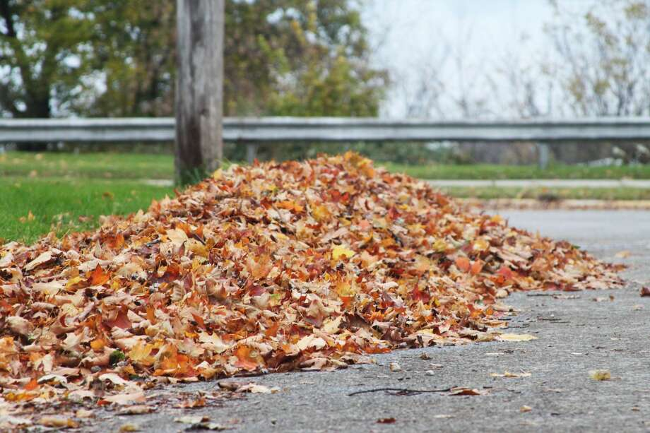 It's time for Manistee's annual fall leaf pickup. Residents are placing leaves along the curbside for pickup over the next month. (Ashlyn Korienek/News Advocate) Photo: By Ashlyn Korienek