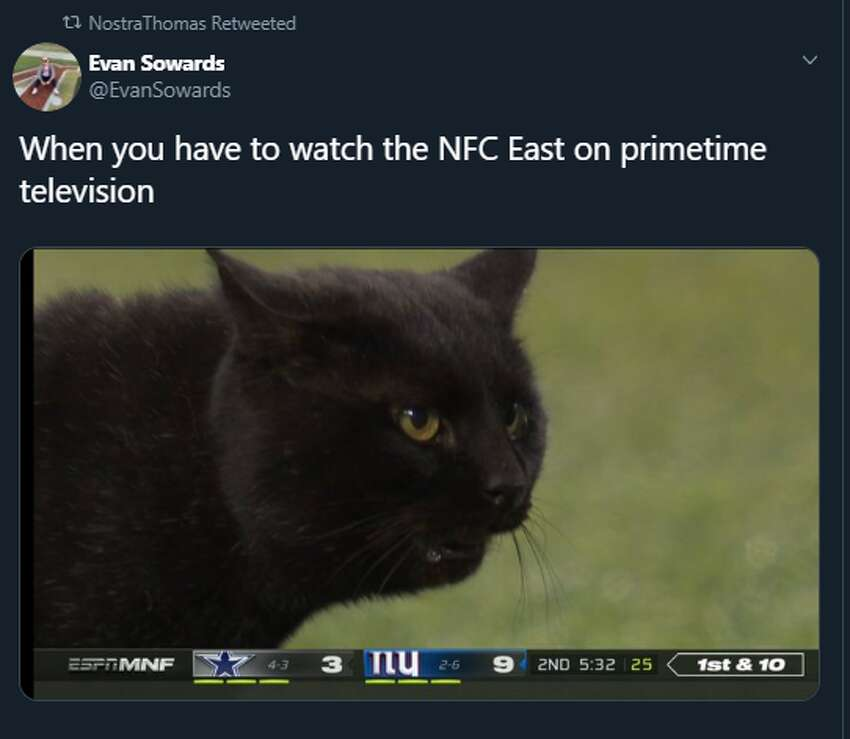 A black cat stormed the field in the first half of Monday night's matchup between the Cowboys and Giants.