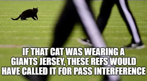 Memes Celebrate A Black Cat During Giants Loss To Cowboys Connecticut Post