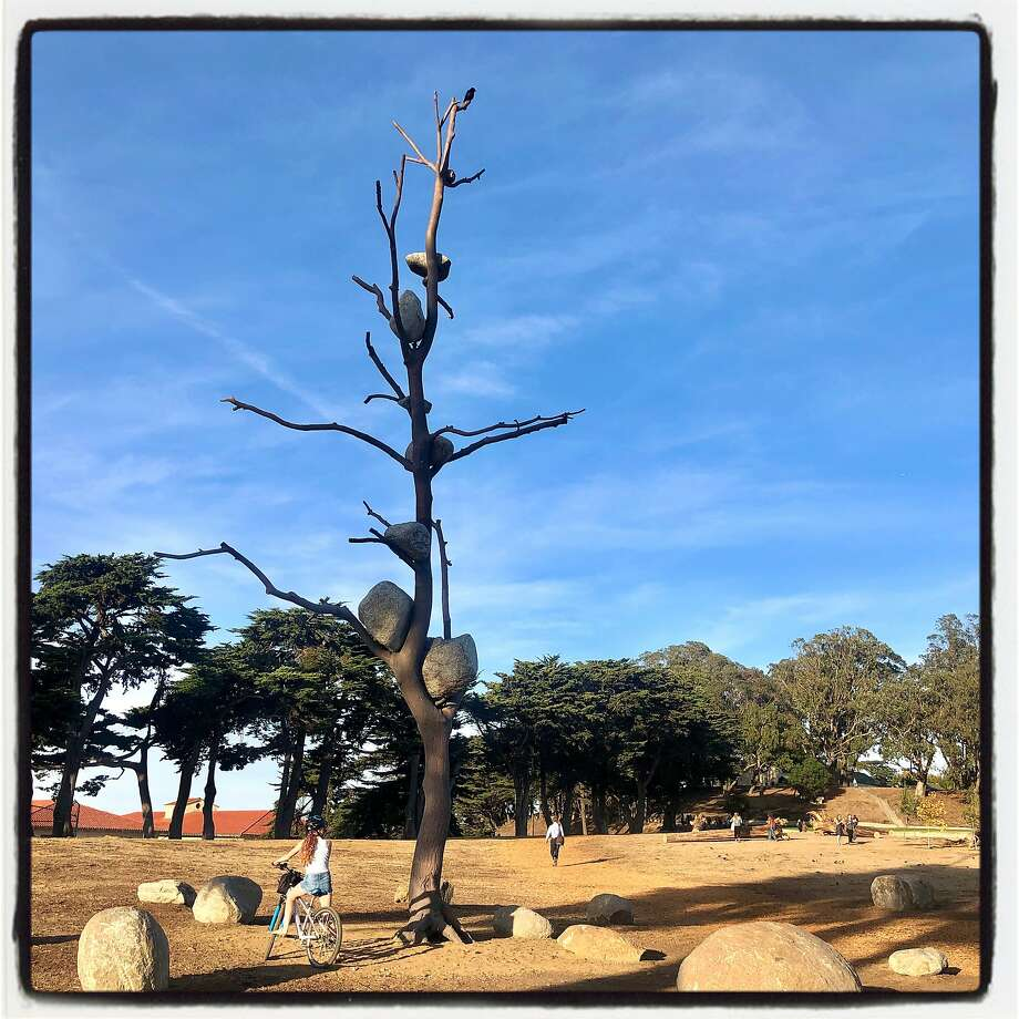A new Guiseppe Penone sculpture in Fort Mason was unveiled by Gagosiain San Francisco. Oct. 24, 2019. Photo: Catherine Bigelow / Special To The Chronicle