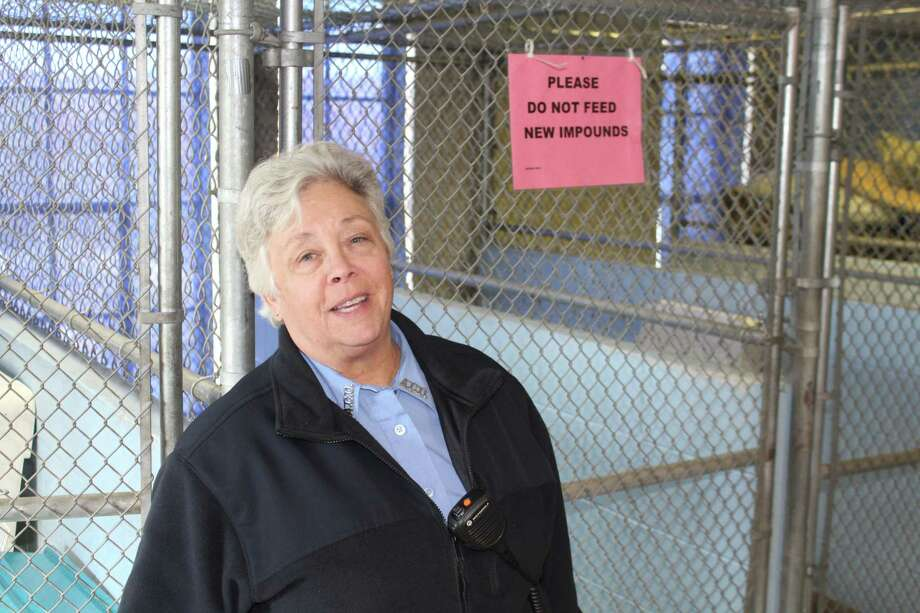 New Canaan Animal Control Officer Allyson Halm describes conditions at the town's Animal Control facility, a former incinerator at the transfer station that needs a new roof. Photo: John Kovach / Hearst Connecticut Media / New Canaan Advertiser