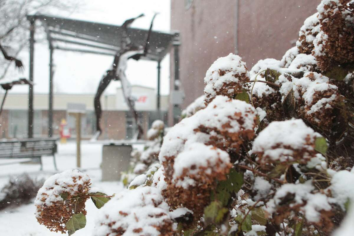 Here are scenes from around the city of Big Rapids as the snow falls on Wednesday. A winter weather advisory is in effect until 7 p.m. tonight.