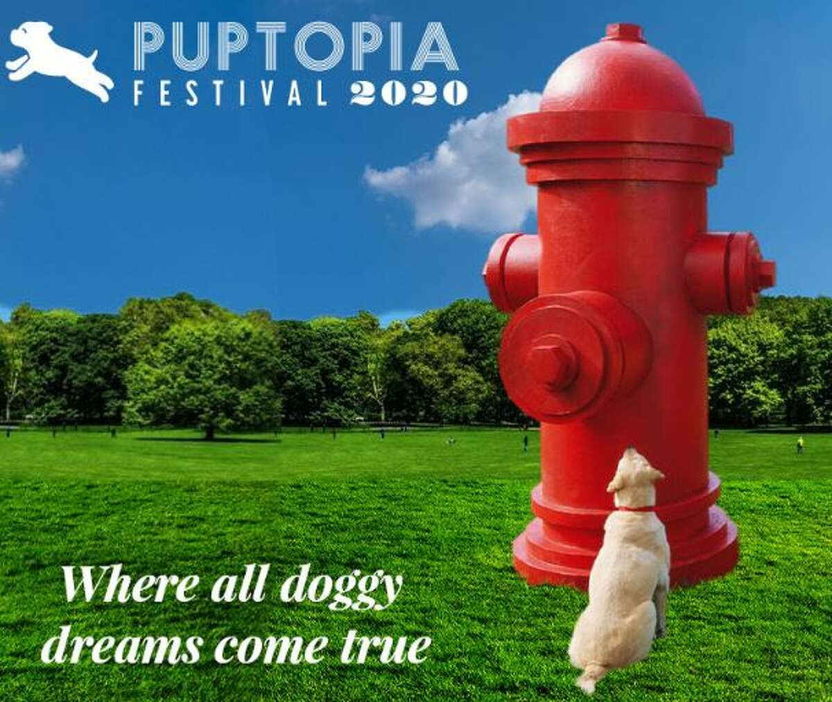 """Houston dog lovers are in for a real treat next year when a new dog festival toting itself as the """"Disneyland for Dogs"""" makes its way to the Bayou City."""