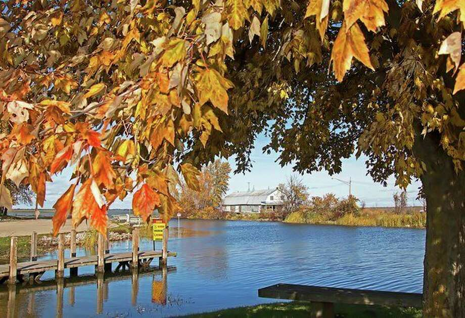 Autumn leaves shine in the afternoon sun at the Municipal Harbor in Bay Port recently before the flurries started to fall across the Thumb Wednesday. (Bill Diller/For the Tribune)