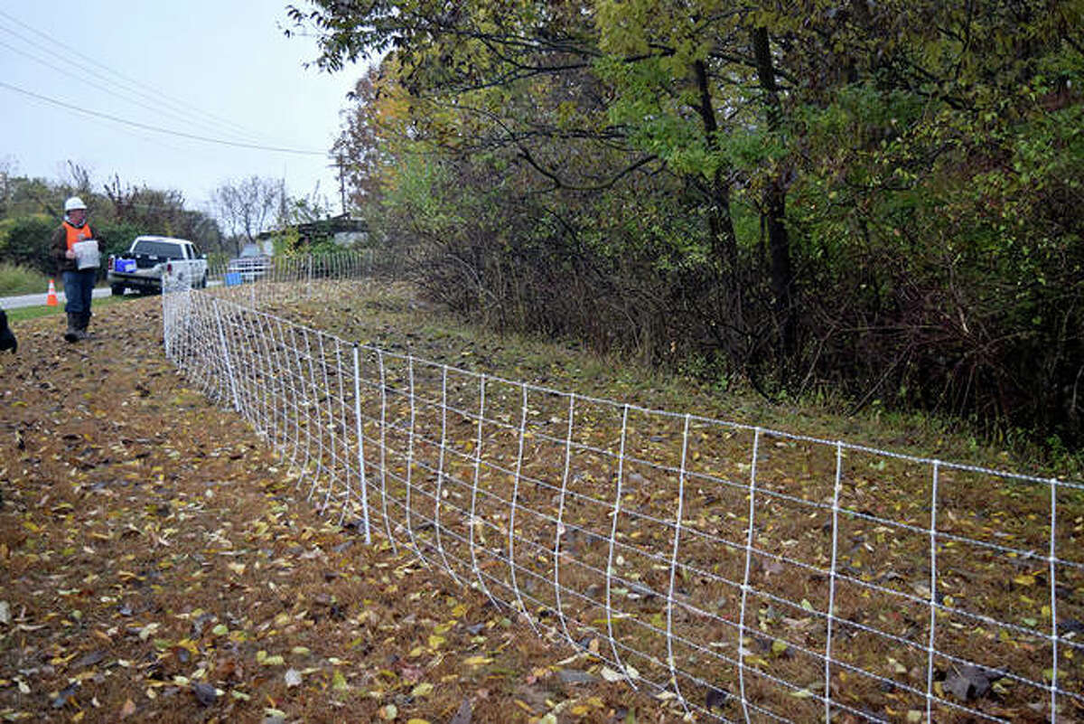 Photos from the Ameren goat vegetation in Rural Hillview, Illinois on October 30