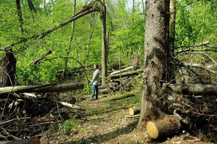 Carrie Davis, Weantinoge Heritage Land Trust's assistant director of land conservation, walks on the blue trail at Birch Rocks Sanctuary in Brookfield. The preserve closed after the macroburst damaged 10 acres, blocking the trail and causing it to be rerouted in some places. It is expected to reopen by the summer. May 9, 2019. Weantinoge Heritage Land Trust announced a merger between itself and Brookfield Open Space Legacy, Inc., which became effective Oct. 31. Photo: Katrina Koerting / Hearst Connecticut Media