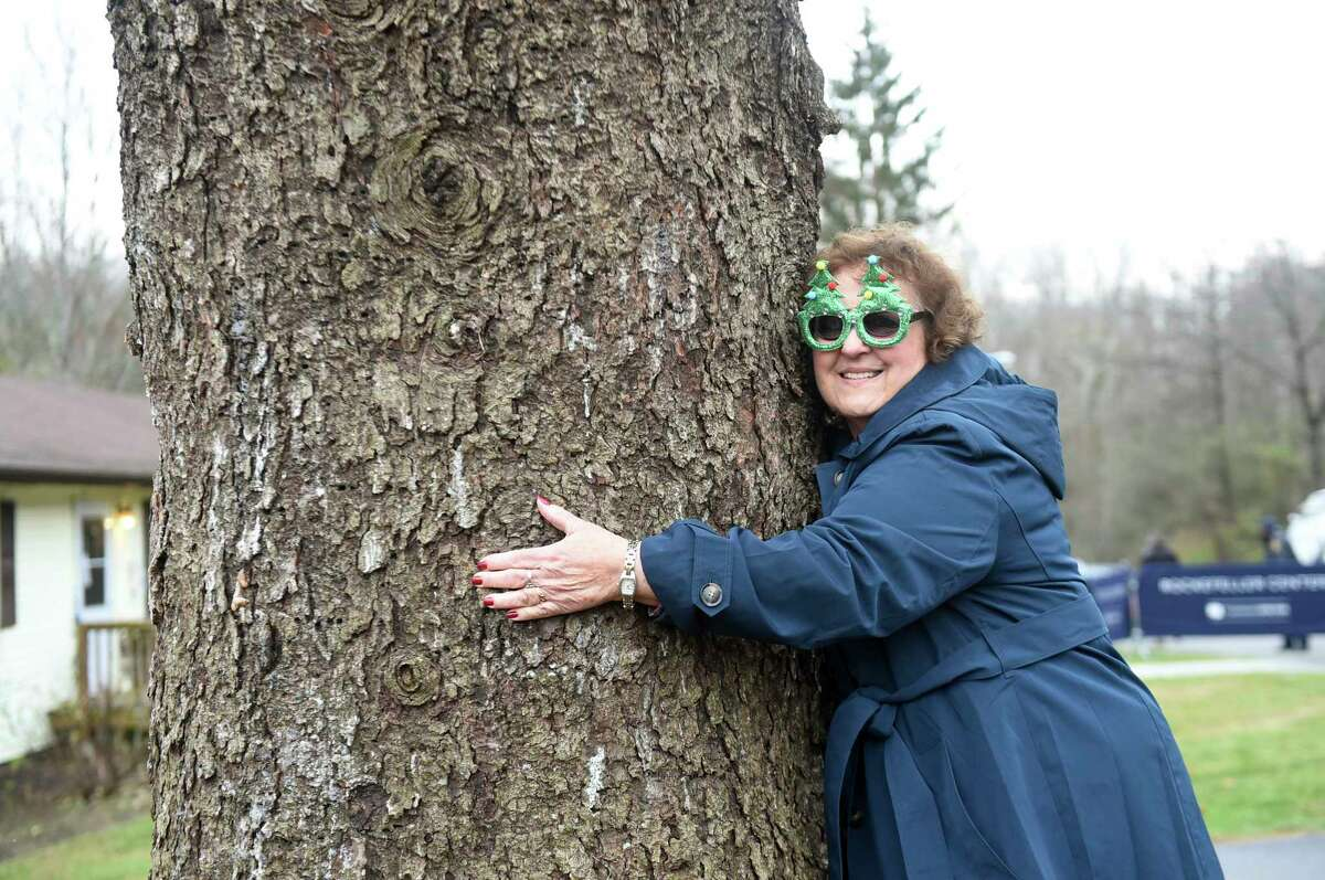 IMAGE DISTRIBUTED FOR TISHMAN SPEYER- Carol Schultz hugs the trunk of her 77-foot tall Norway Spruce that she donated to serve as this year's Rockefeller Center Christmas tree, Thursday, Nov. 7, 2019, in Florida, NY. The tree will be brought into New York City by flatbed truck and erected at Rockefeller Center on Saturday, Nov. 9. The 87thA Rockefeller Center Christmas Tree Lighting ceremony will take place on Wednesday, Dec. 4. (Diane Bondareff/AP Images for Tishman Speyer)