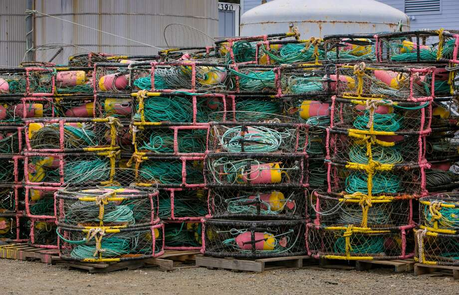 The commercial Dungeness crab fishery south of the Mendocino-Sonoma County line was originally scheduled to open Nov. 15, but it has been delayed by a week to lower the risk of whales and sea turtles becoming tangled in fishing gear, according to the California Department of Fish and Wildlife. Photo: George Rose/Getty Images