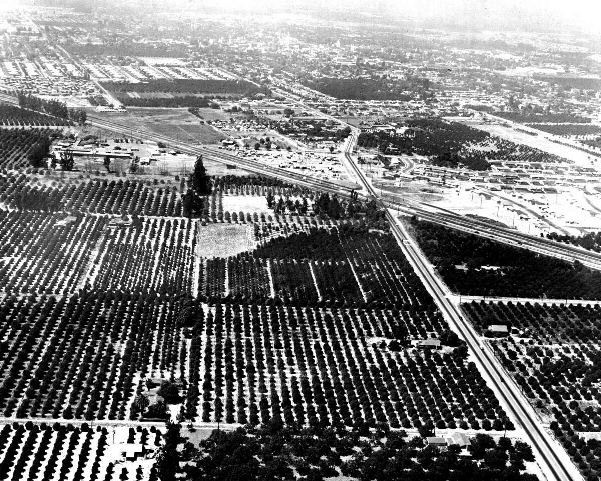 Originally covered in orange groves, Disney purchased 160 acres of land from 17 different owners to make Disneyland possible.