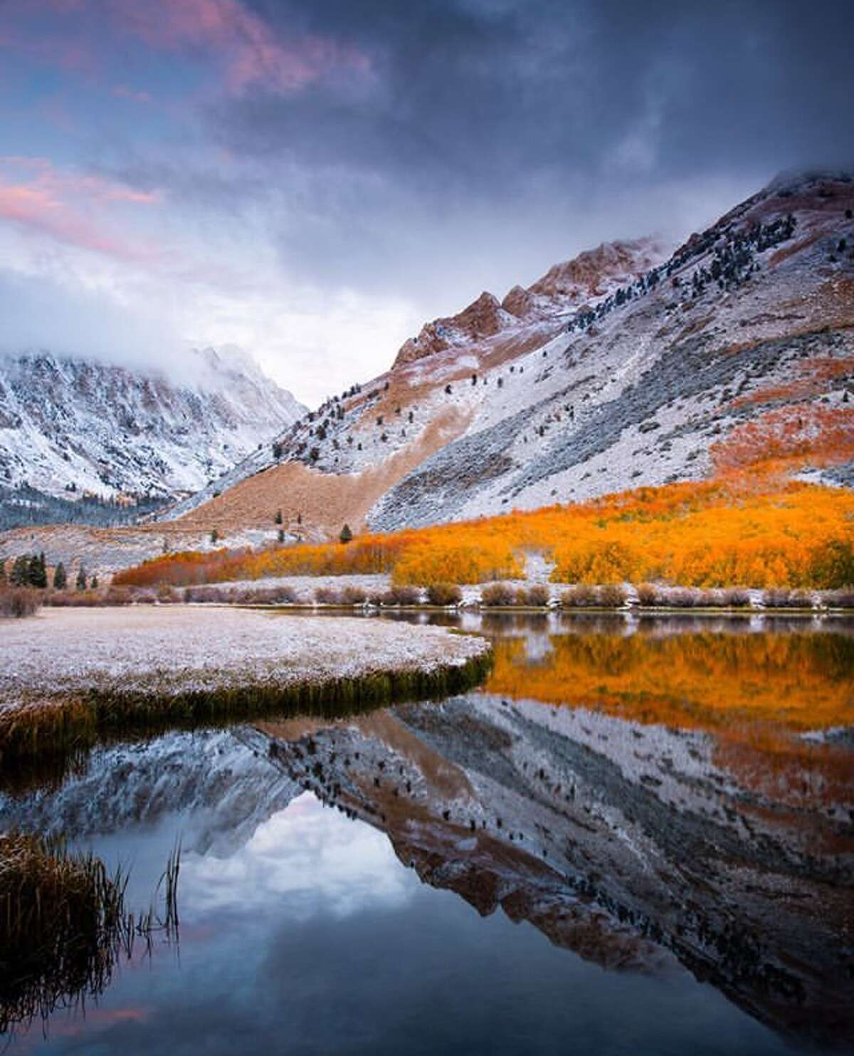 Fall and Winter meet in California by @josephsfphotography