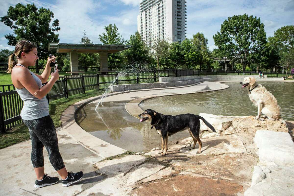 The Johnny Steele Dog Park, along the Buffalo Bayou, is often targeted by Mother Nature.