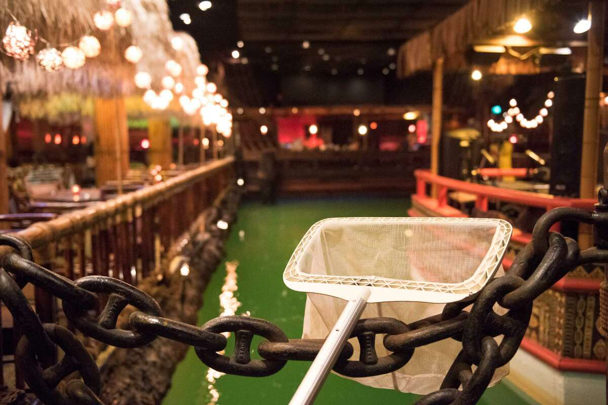 If you drop your phone in the Tonga Room pool, a manager will grab this pool skimmer to fish it out.