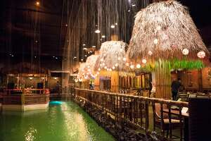 The Tonga Room's pool may look enchanting, especially after a few drinks... just don't jump in.