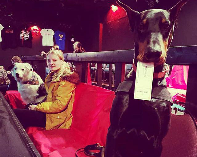 North Texas dog-friendly theater serves unlimited wine and movies