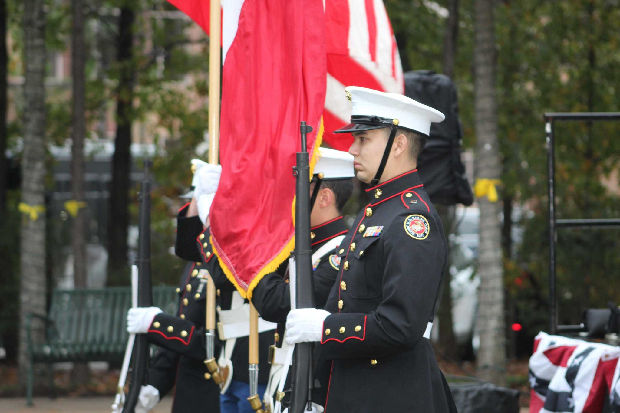Woodlands honors veterans with tribute at Town Green Park