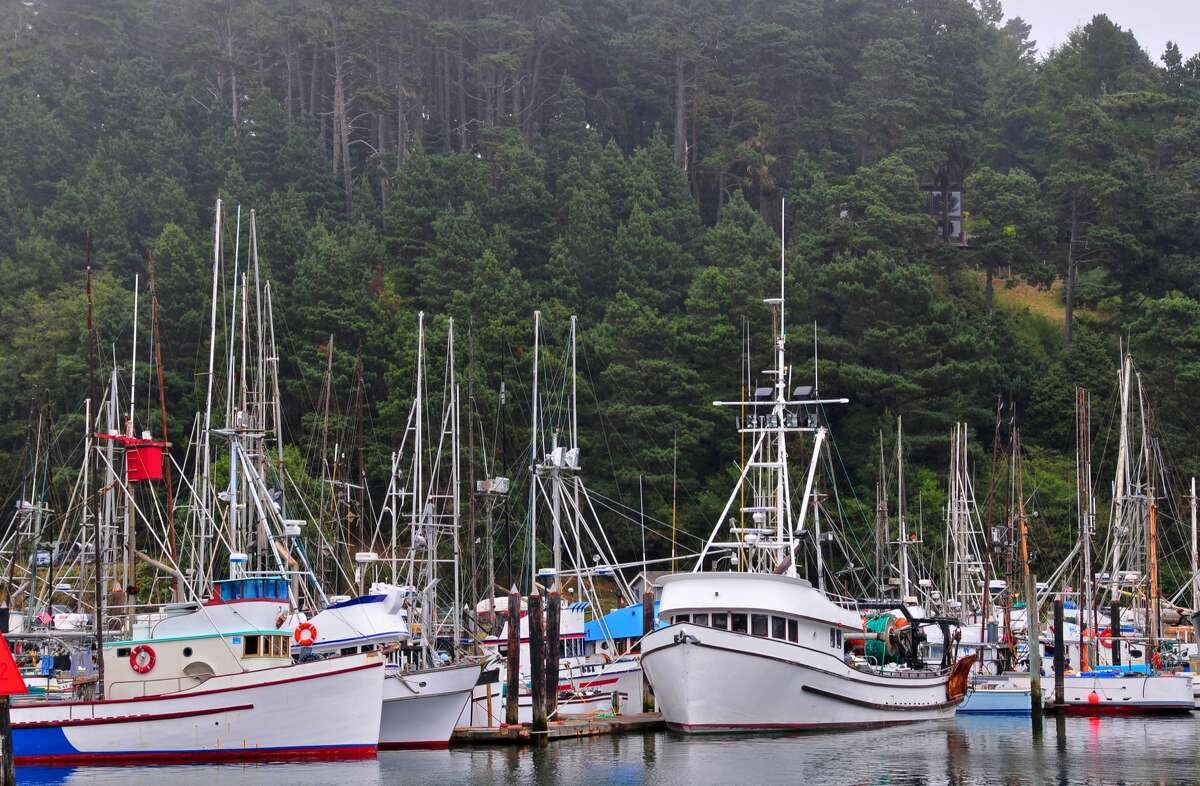 The Fort Bragg fishing community was in mourning Monday over the death of a young fisherman who was lost when a large wave capsized the boat he was working on about 30 miles northwest of Bodega Bay.