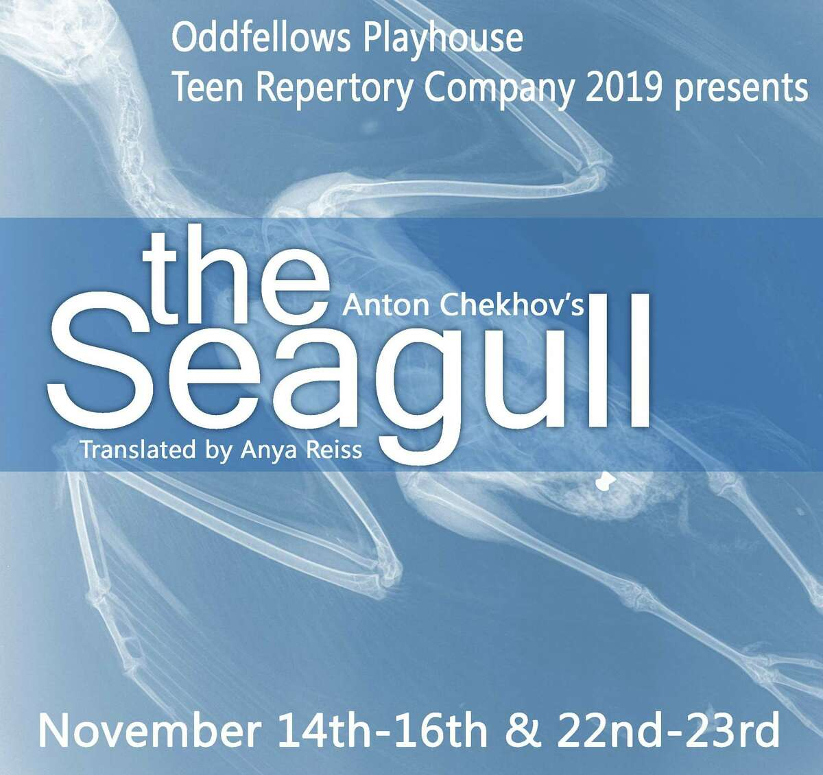 """Oddfellows Playhouse Teen Repertory Company presents Anton Chekhov's classic tragic comedy, """"The Seagull"""" in a contemporary translation by Anya Reiss, Nov. 14-23."""
