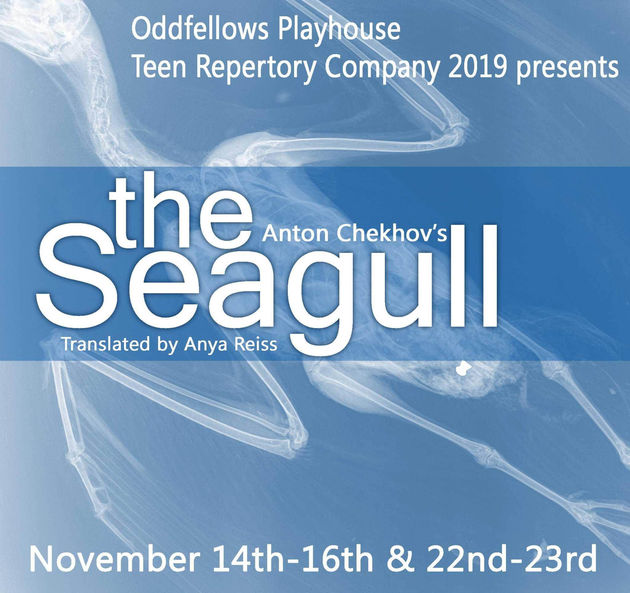 Oddfellows Playhouse teen company presents Chekhov's 'The Seagull' - Middletown Press