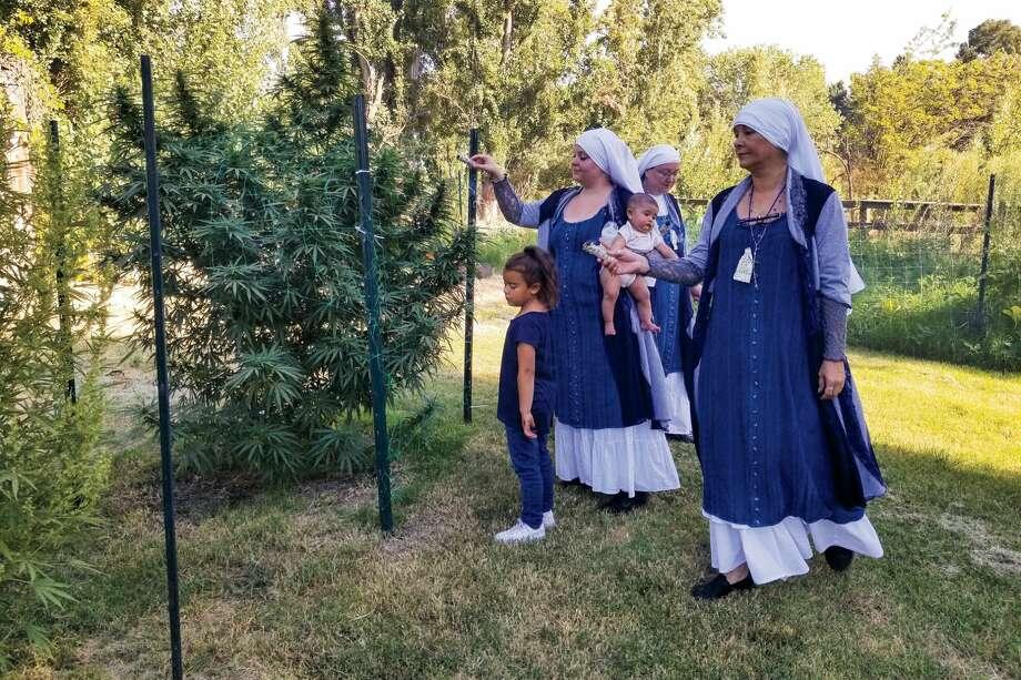 Photo: Dwight Larks | Sisters Of CBD