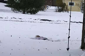 """""""My 2nd grader, Morgan, was out making snow angels at 8:30 a.m."""" Sherry Gentz Stamp"""