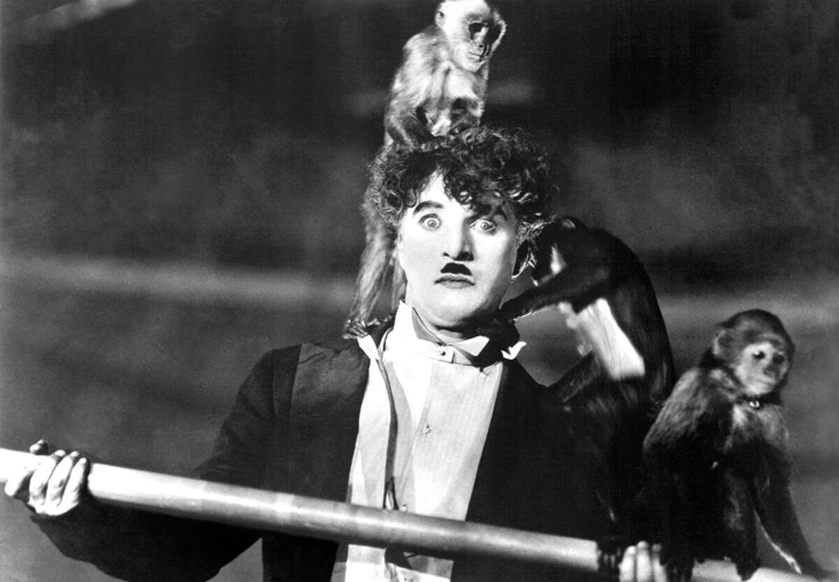 """Friday: Watch a screening of """"The Circus,"""" a Charlie Chaplin movie that is the seventh-highest grossing silent film in history, at UAlbany's downtown campus."""