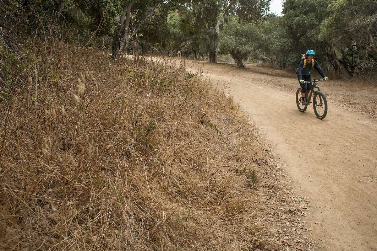 A mountain biker rides along the dry trails at Sugarloaf Hill on Thursday, November 14, 2019 in San Mateo, Calif. The U.S. Drought Monitor is reporting that 81% of California is abnormally dry as of this week.