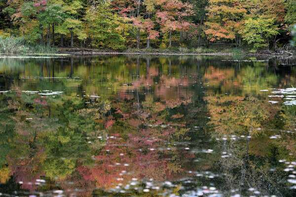Colorful fall foliage is refected in the surface of Pickett's Pond at Osbornedale State Park in Derby Oct. 16, 2019.