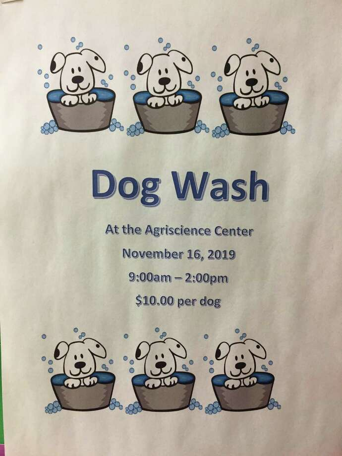 Agriscience center students hold fundraising dog wash Photo: Contributed Photo