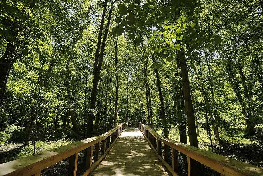 Norwalk River Valley Trail, Norwalk This green and water-filled walkway runs from Norwalk to Danbury. Photo: Jason Rearick