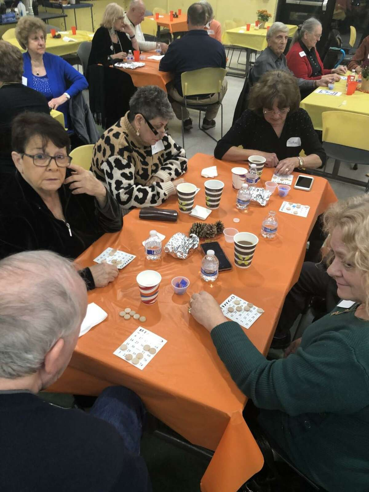 Lewis Mills High School's National Foreign Language Honor Society recently held the annual Senior Citizen Prom, attended by approximately 40 senior citizens.