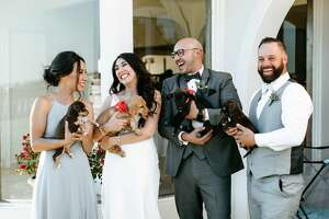 San Antonio couple, Alexis and Eric Castillo, recently partnered with San Antonio Pets Alive! to have a puppy cuddling session at their wedding with the hopes to spread awareness for pet adoption. Here are photos from their wedding on Saturday, October 19 at The Villa at Cielo Vista.